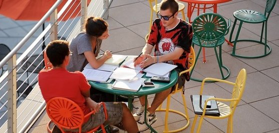 Students study outdoors during
