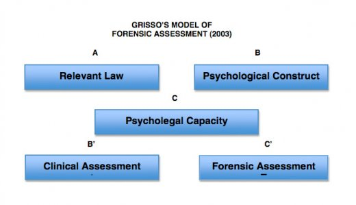 The Forensic Assessment