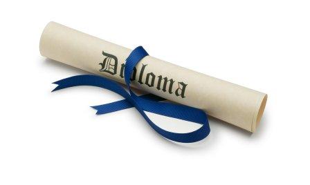 most useful bachelor degrees buying essays uk