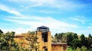 Best colleges for Criminal Psychology