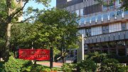 Clinical Psychology Programs Boston