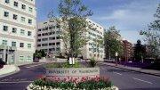 Washington University Clinical Psychology