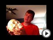 Forensic Anthropology-high School Standard