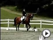 How to Find Ideal Focus When Competing in Equestrian Sports