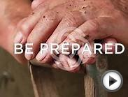 New Program Launch: Online B.A. In Psychology, The Chicago